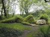 Lost Gardens Of Heligan photo