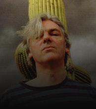 Robyn Hitchcock artist photo