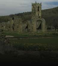 Mount Grace Priory artist photo