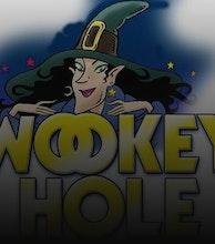 Wookey Hole Caves artist photo