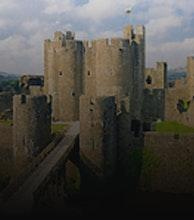 Caerphilly Castle artist photo