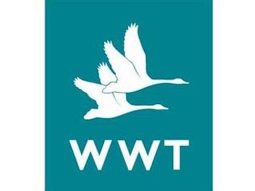 WWT London Wetland Centre picture