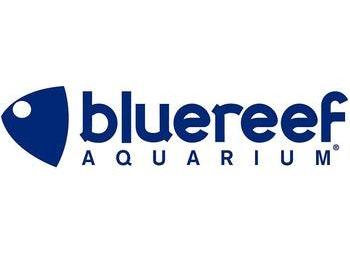 Blue Reef Aquarium venue photo