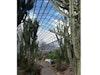 Duthie Park & Winter Garden photo