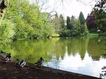 Moseley Park & Pool Events