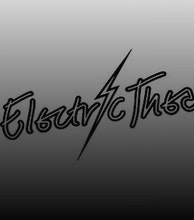The Electric Theatre artist photo