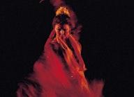 Jaleo Flamenco artist photo