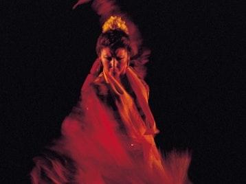 A Compas: Jaleo Flamenco picture