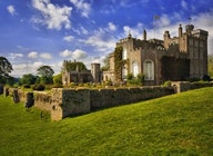 Powderham Castle artist photo