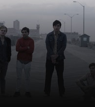 Grizzly Bear artist photo