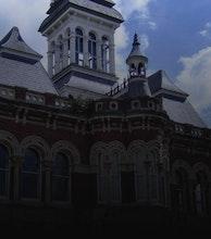 Guildhall Arts Centre artist photo