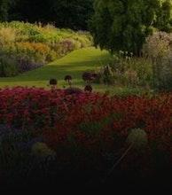 RHS Garden Harlow Carr artist photo