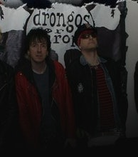 Drongos For Europe artist photo