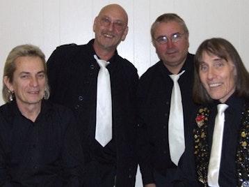 The Honeycombs Band artist photo