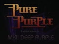 Deep Purple Family Tree: Pure Purple, Whitesnake UK - The Tribute event picture