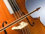 Stamford Chamber Orchestra artist photo