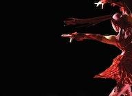 Cirque de Glace artist photo