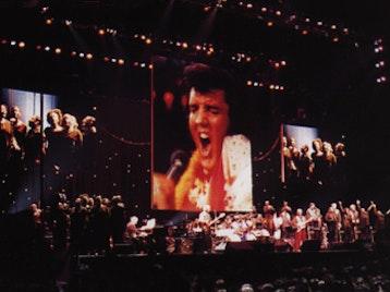 Elvis Presley In Concert artist photo