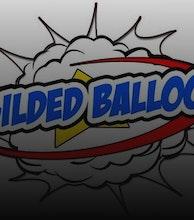 Gilded Balloon Teviot artist photo