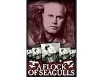 A Flock of Seagulls artist photo