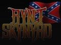 A Tribute To Lynyrd Skynyrd: Aynt Skynyrd event picture
