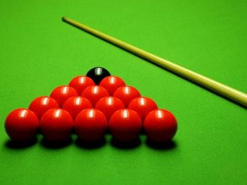 Premier League Snooker artist photo