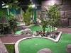 Jungle Rumble Adventure Golf photo