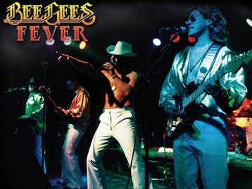 Bee Gees Fever artist photo