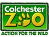 Colchester Zoo photo