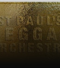 St Paul's Reggae Orchestra artist photo