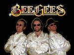 Bootleg Bee Gees artist photo