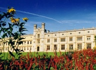 Ashton Court Estate & Mansion House artist photo