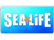 SEA LIFE London Aquarium artist photo