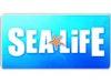 Scarborough SEA LIFE photo