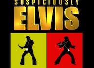 Suspiciously Elvis artist photo