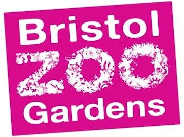 Bristol Zoo picture