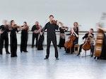 Scottish Ensemble artist photo