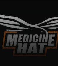 Medicine Hat artist photo