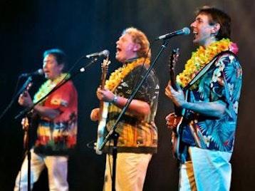 The Beach Boys Inc. artist photo