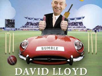 David 'Bumble' Lloyd artist photo