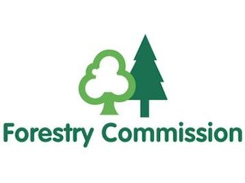 Forestry Commission Live Music Tour: Erasure + Sophie Ellis Bextor picture