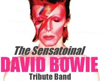 The Sensational David Bowie Tribute Band artist photo