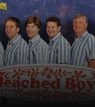 The Beached Boys artist photo