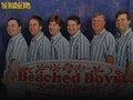 The Beached Boys event picture