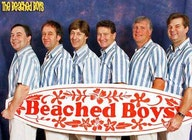 The Beached Boys artist photo
