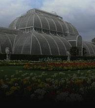 Kew Gardens artist photo