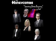 The Honeycombs artist photo
