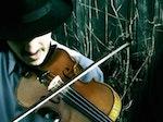 Tcha Limberger's Budapest Gypsy Orchestra artist photo