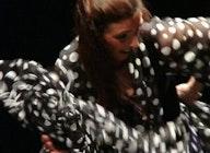 Flamenco Express artist photo