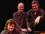 David Rees-Williams Trio artist photo